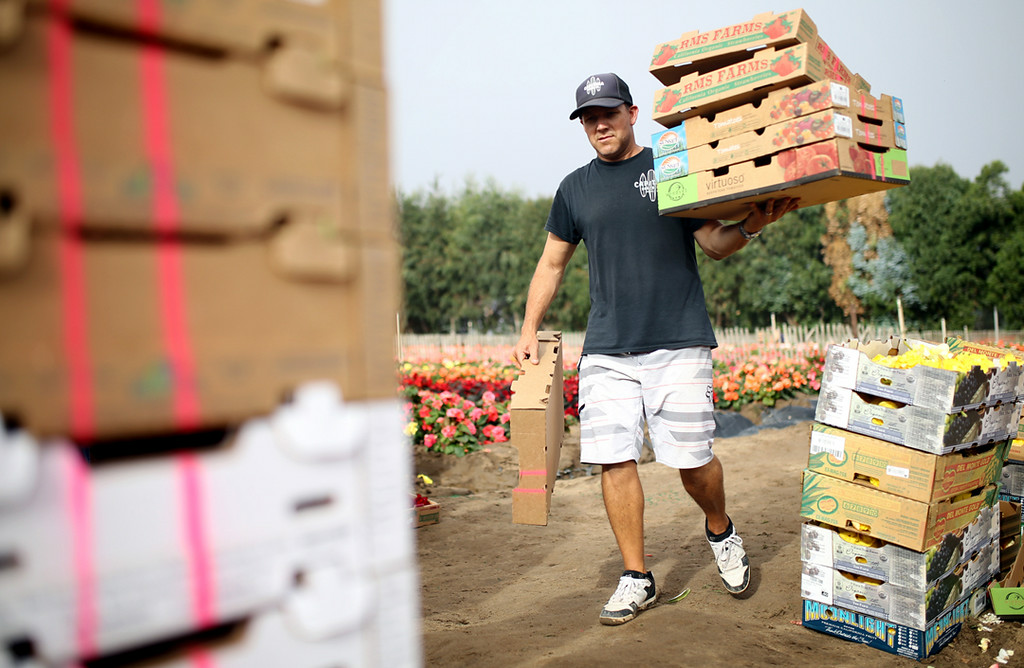 . Matt Arthur carries a stack of boxes to a truck filled with begonias in Marina on Saturday. (Kevin Johnson -- Santa Cruz Sentinel)