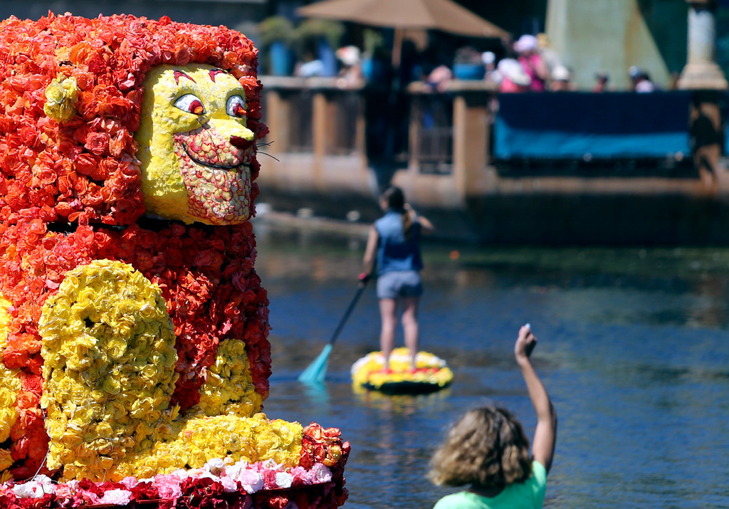 . The Lion King float draws cheers from the crowd during the annual Begonia Festival Nautical Parade on Sunday. (Kevin Johnson -- Santa Cruz Sentinel)