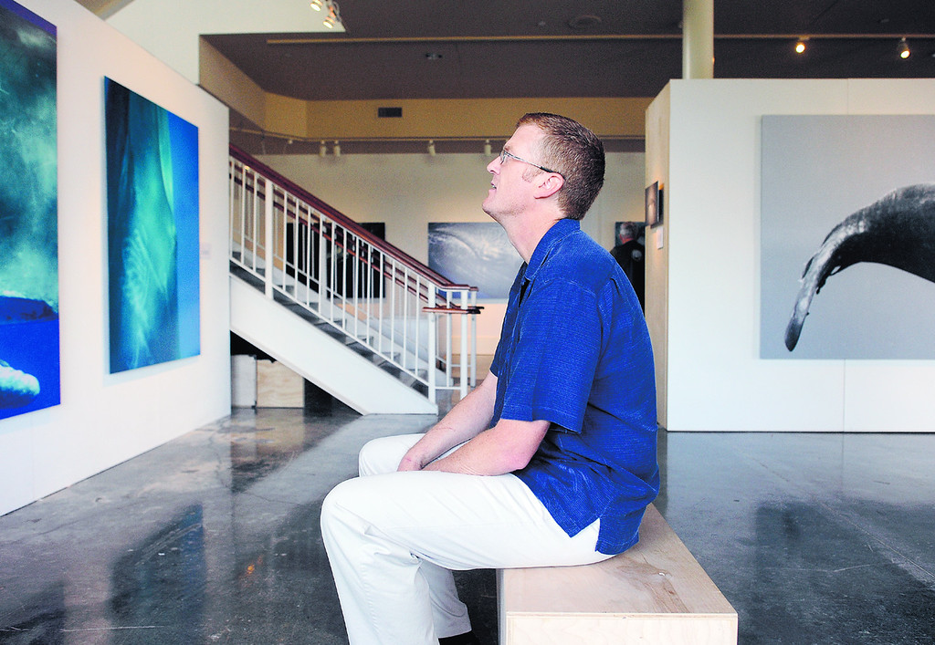 . Monterey based photographer Bryant Austin sits in awe in front of one of his life sized whale photographs currently on display at the Museum of Monterey. (Matthew Hintz/Sentinel).