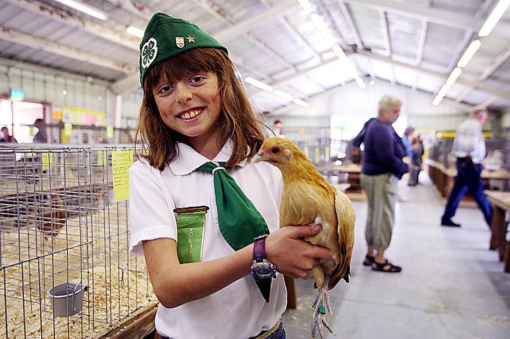 . Jordan Randolph of Corralitos 4-H, shows off one of her four chickens at the Santa Cruz County Fair Tuesday.  (Dan Coyro/Sentinel)