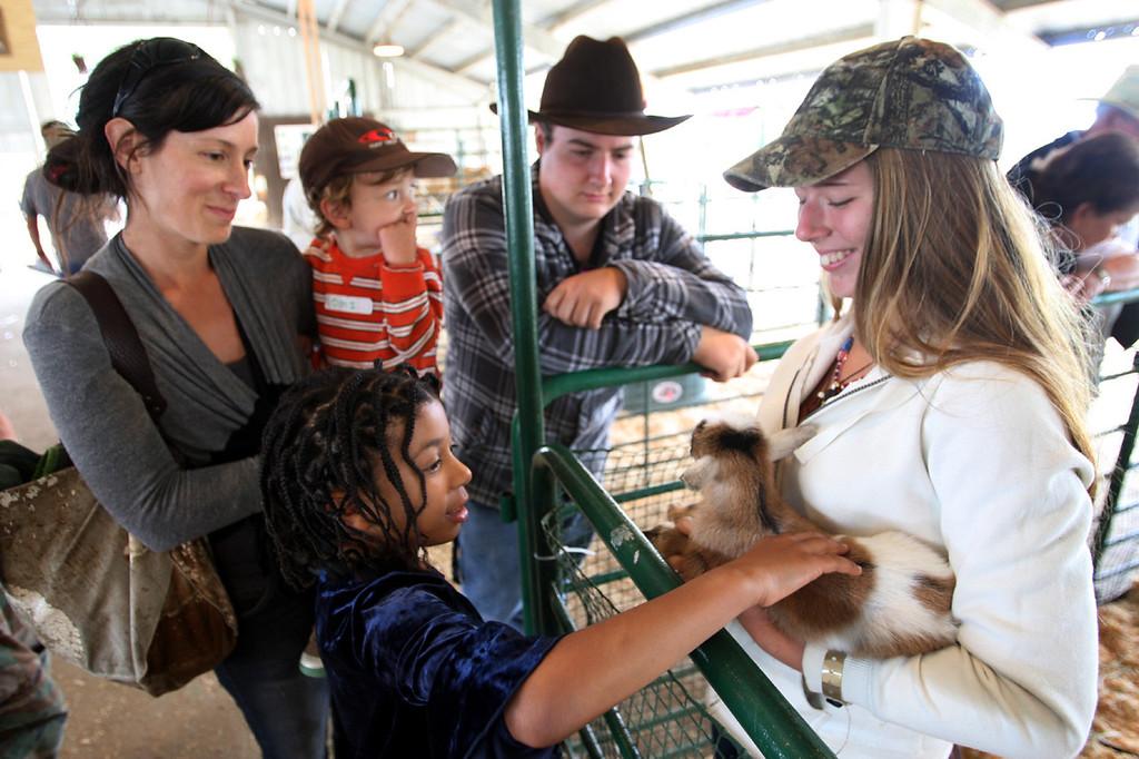 . Simone Bushard of Ben Lomond draws a crowd with her three day-old goat, Babebo, at the Santa Cruz County Fair Tuesday.  (Dan Coyro/Sentinel)