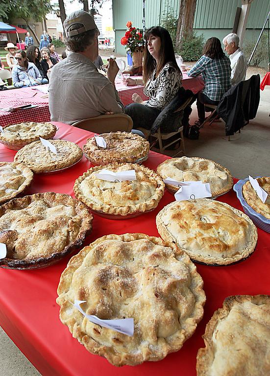 . Apple pies wait to be judged at the Santa Cruz County Fair Tuesday.  (Dan Coyro/Sentinel)