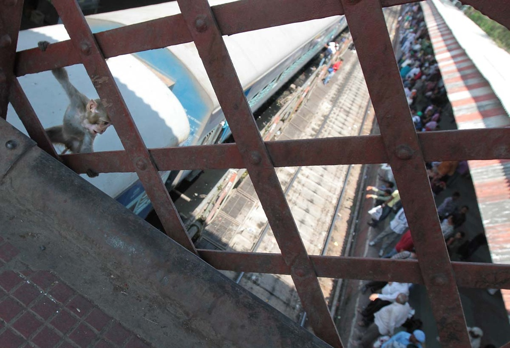 . Train station in Haridwar, India. Shmuel Thaler/Sentinel